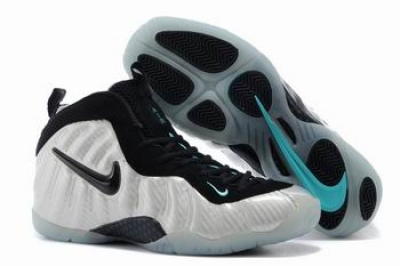 Nike Air Foamposite One 11301